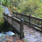 InSighting интензивното дишане - мостът към душата